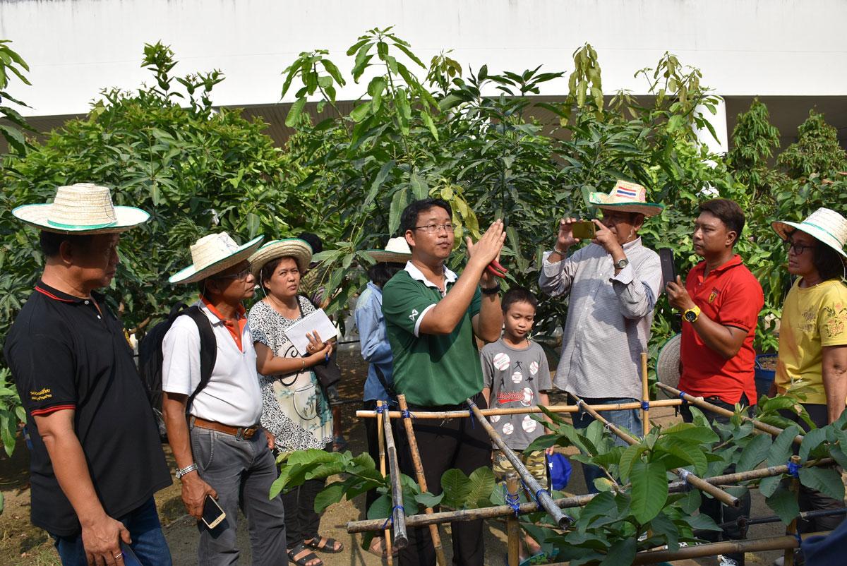 ห้องเรียนกลางสวน เรื่องการปลูกไม้ผลในภาชนะ ที่มหาวิทยาลัยเกษตรศาสตร์