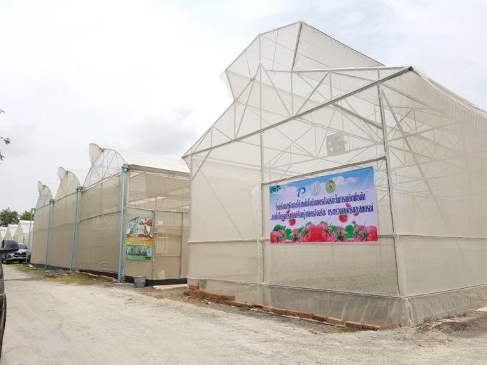 """กระทรวงเกษตรฯ ชู """"เกษตรอัจฉริยะ""""กำจัดจุดอ่อนภาคเกษตรไทย"""