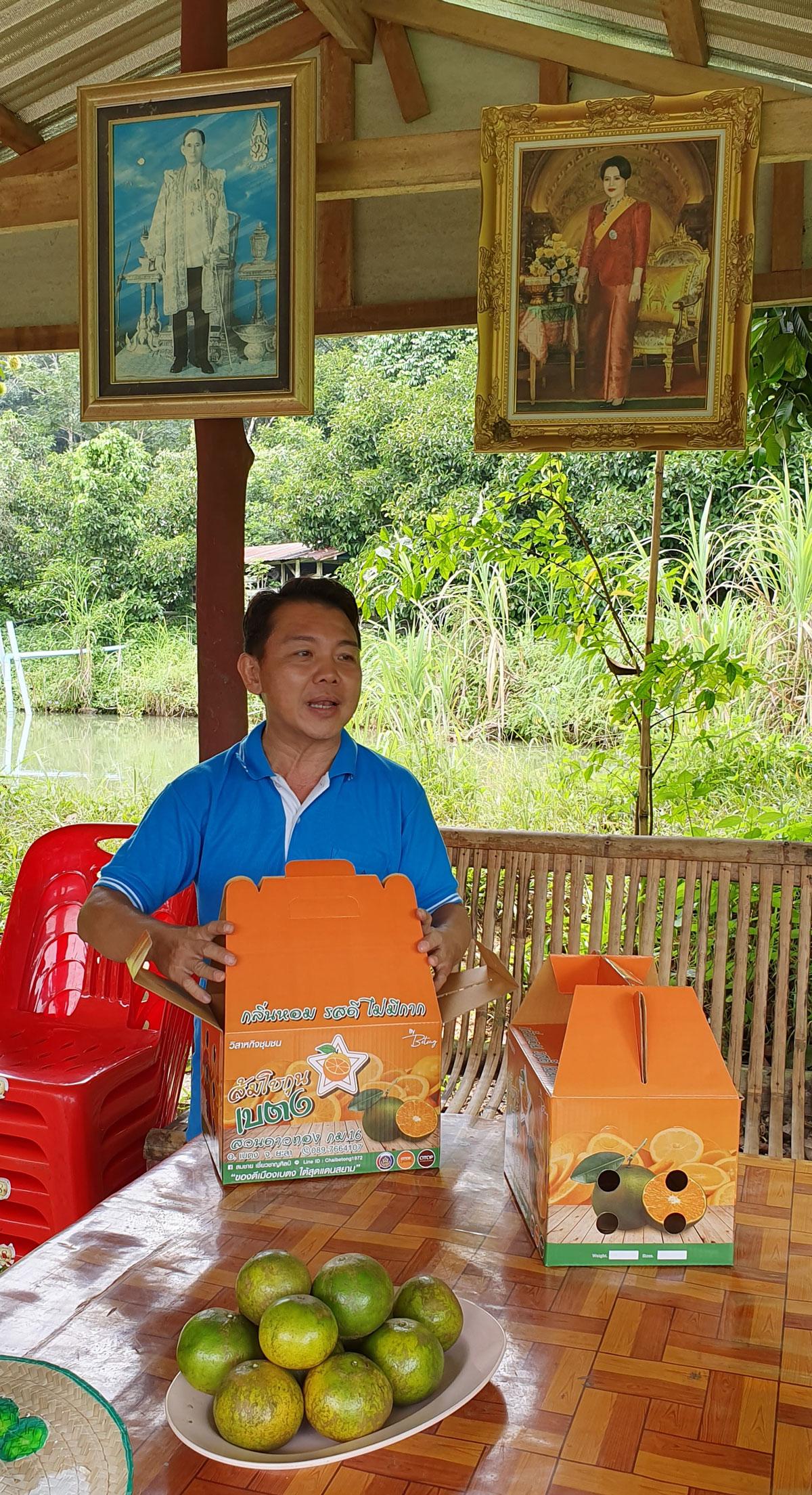 ส้มโชกุนบรรจุกล่อง พร้อมส่งให้ลูกค้า