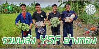 เป้าหมายมีไว้พุ่งชน! เติมฝันงานเกษตร กับ โป้ง และดุ่ย YSF เมืองอ่างทอง