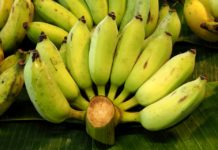 กล้วยน้ำว้า-พริกชี้ฟ้า-ข่า-ไผ่ พืชสร้างรายได้ ตลาดต้องการ ของเกษตรกรเมืองชล