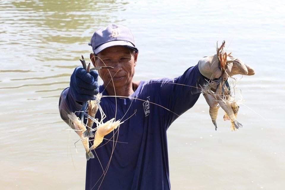 อัดงบ 767 ล้านบาท ช่วยเหลือเกษตรกรผู้ประสบอุทกภัยด้านประมง