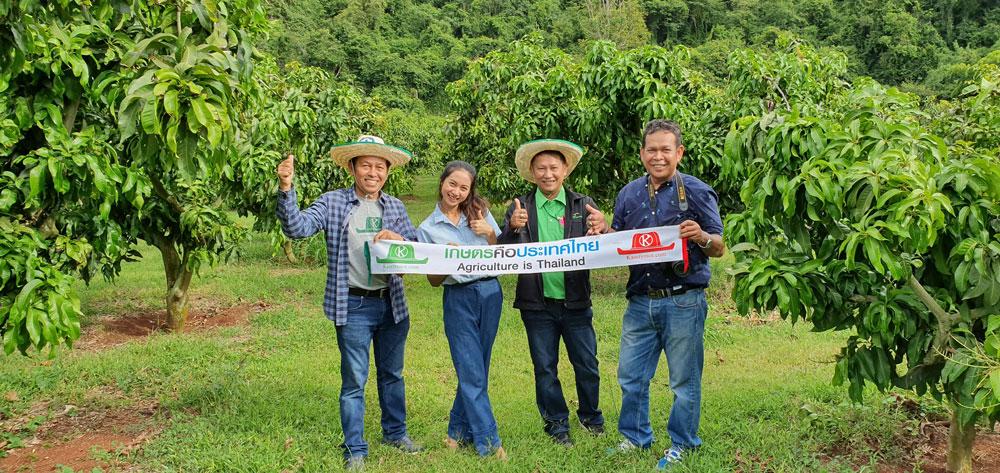 ป้ายเกษตรคือประเทศไทย ถูกขึงกลางสวนมะม่วงที่บ้านหมากม่วง...ขอบคุณ ธ.ก.ส.สาขาเขาใหญ่