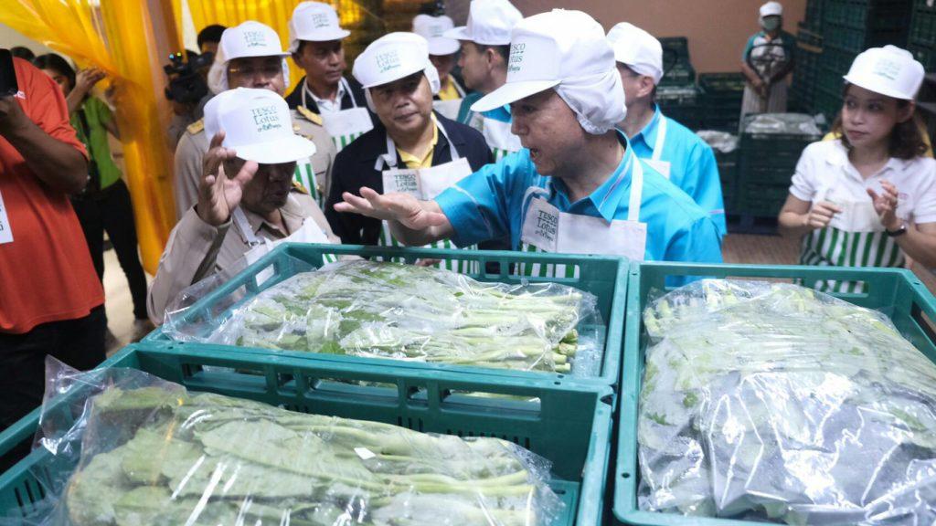 เฉลิมชัย ปลื้ม แปลงใหญ่ผักบางท่าข้าม บริหารจัดการดี ใช้ตลาดนำการเกษตร