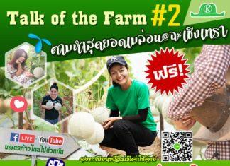 TALK OF THE FARM #2 ปลูกเมล่อนส่งการบินไทย ทำอย่างไร?