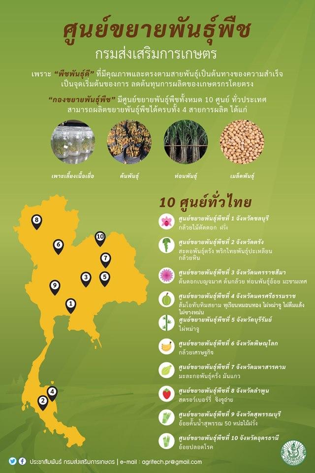 เปิดแหล่งท่องเที่ยวเกษตร 21 แห่ง ส่งสุขปีใหม่
