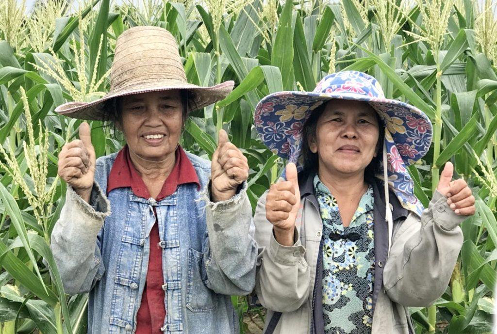 """ซีพีเอฟพร้อมปัน """"น้ำปุ๋ย""""  ช่วยเกษตรกรฝ่าวิกฤติแล้ง"""