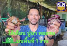 เลี้ยงไส้เดือน ปูนา และหอยขม บนพื้นที่ 1 งาน...ทายาทเกษตรกรของธ.ก.ส.ทำได้