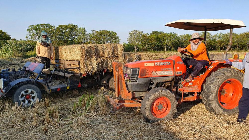 กรมส่งเสริมการเกษตรจัด Kick Off รณรงค์หยุดเผาในไร่นา