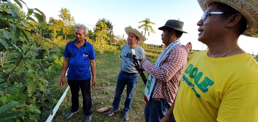 นายธนากร โปทิกำชัย รักษาการผู้อำนวยการศูนย์ส่งเสริมและพัฒนาอาชีพการเกษตรจังหวัดตาก(เกษตรที่สูง) นำทีทงานเกษตรก้าวไกล มาเยี่ยมชมสวนอะโวคาโดผู้ใหญ่ไพเราะ ปานพิม