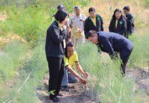 ติวเข้ม จนท.สระบุรี ขับเคลื่อนงานส่งเสริมการเกษตรเชิงพื้นที่ มุ่งสร้างรายได้เกษตรกร