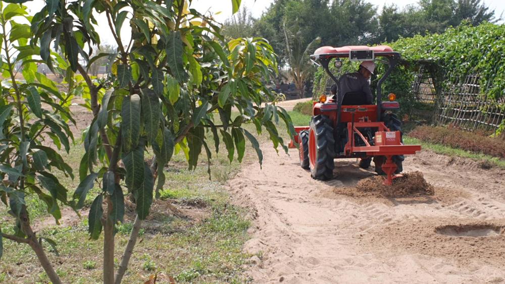 เครื่องจักรกำลังขุดหลุมปลูกผลไม้...นี่คือความหลากหลายของจักรกลเกษตรที่ครอบคลุมมากขึ้น