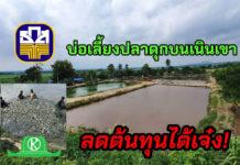 """ทางรอดเกษตรกร 4.0 """"มานะกุลฟาร์ม"""" เลี้ยงปลาดุกเสริม ไม่ใช่แค่เลี้ยงวัวนมอย่างเดียว"""