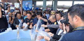 คุ้มครองสัตว์น้ำ...ประกาศปิดอ่าวไทย 27,000 ตารางกิโลเมตร นาน 3 เดือน