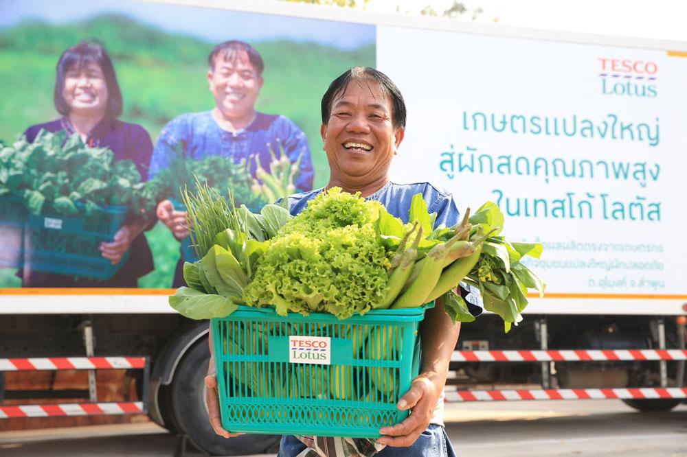 เทสโก้ โลตัส รับซื้อผักตรงจากเกษตรกรครบทั้ง 4 ภาค