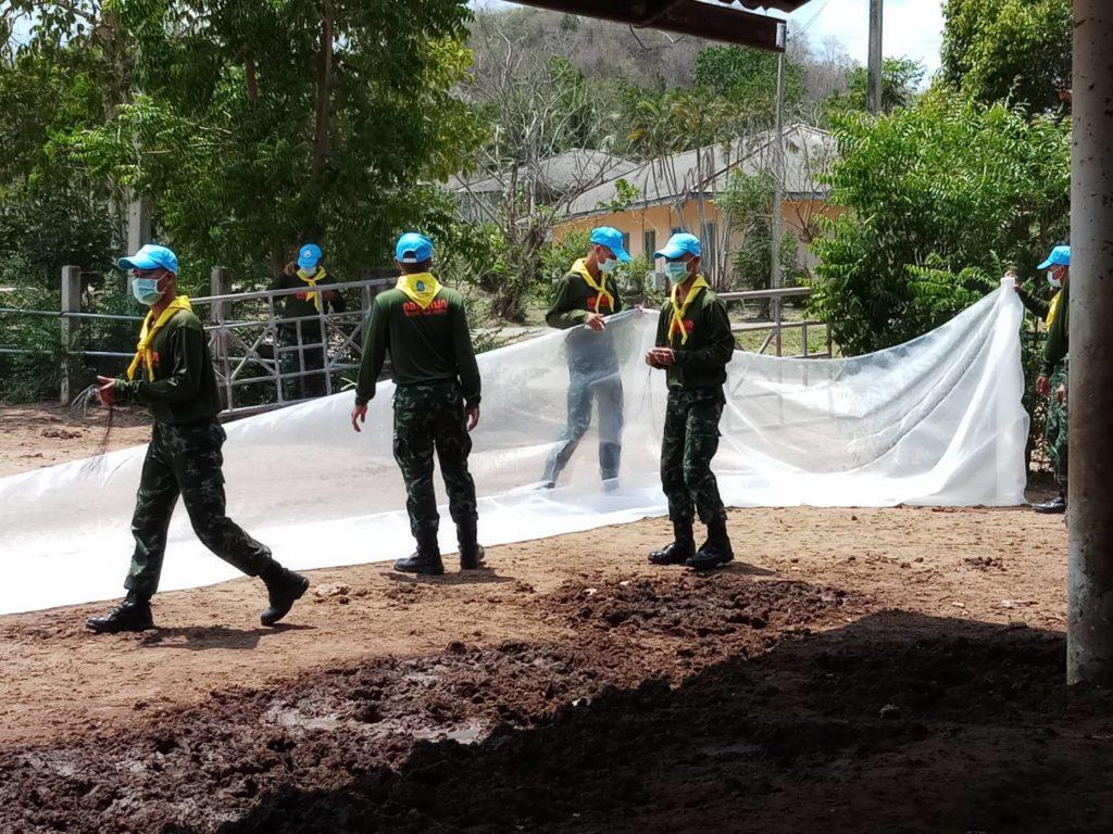 ปศุสัตว์ ร่วมจังหวัดเพชรบุรีประเดิมฉีดวัคซีนป้องกันโรคกาฬโรคแอฟริกาในม้า แห่งแรกของประเทศไทย ที่สถานเสาวภา ปกป้องชีวิตม้า 560 ตัว เพื่อคุ้มครองชีวิตคน