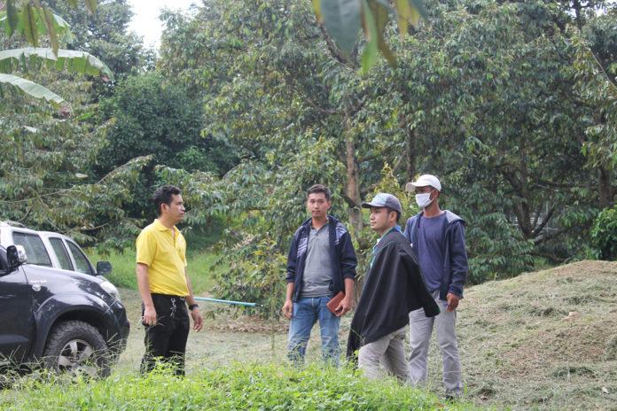 เกษตรกรอำเภอเบตงตื่นตัว...พัฒนาสวนทุเรียนอัจฉริยะ