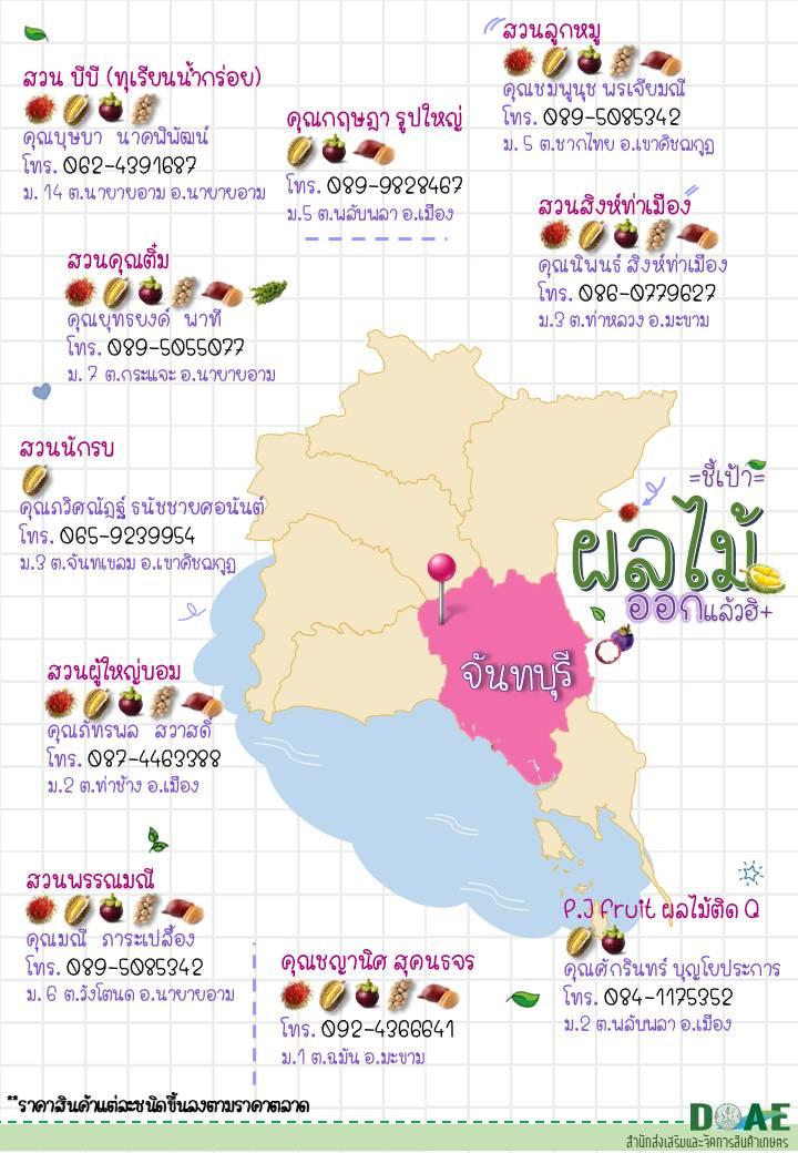 กรมส่งเสริมการเกษตร ชี้เป้าสวนผลไม้คุณภาพภาคตะวันออก