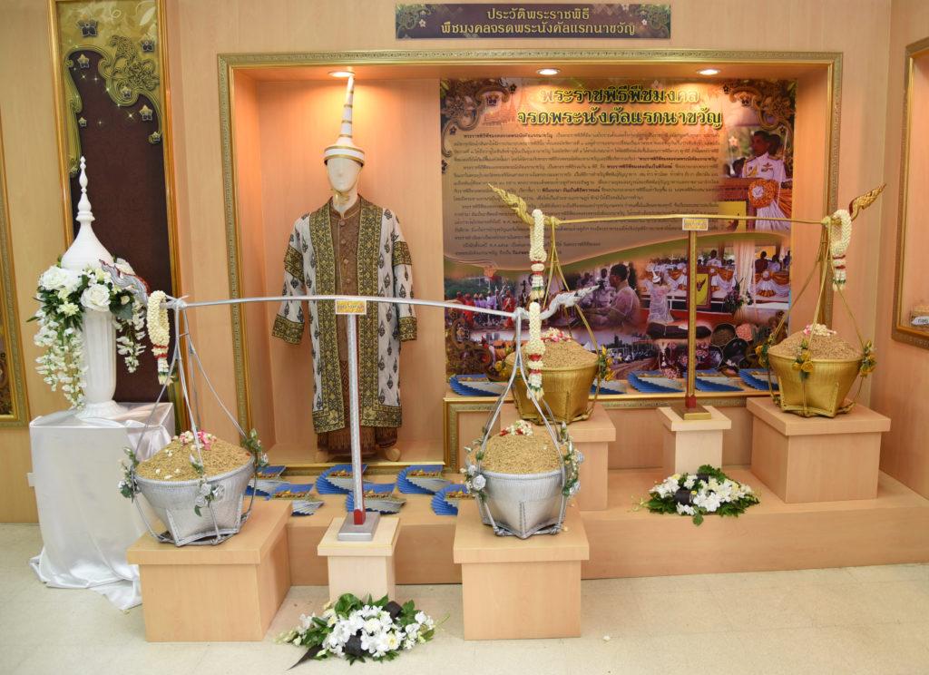 กรมการข้าวเตรียมแจก 5 พันธุ์ข้าวพระราชทาน เนื่องในวันพืชมงคล ปี 63