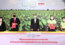 """แม็คโคร MOU กรมส่งเสริมการเกษตร """"ตลาดนำการเกษตร"""" ประเดิมซื้อเผือกหอม จ.ราชบุรี"""