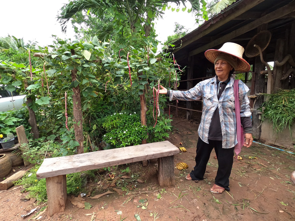 ซีพีเอฟ หนุนสร้างความมั่นคงทางอาหารระดับชุมชน