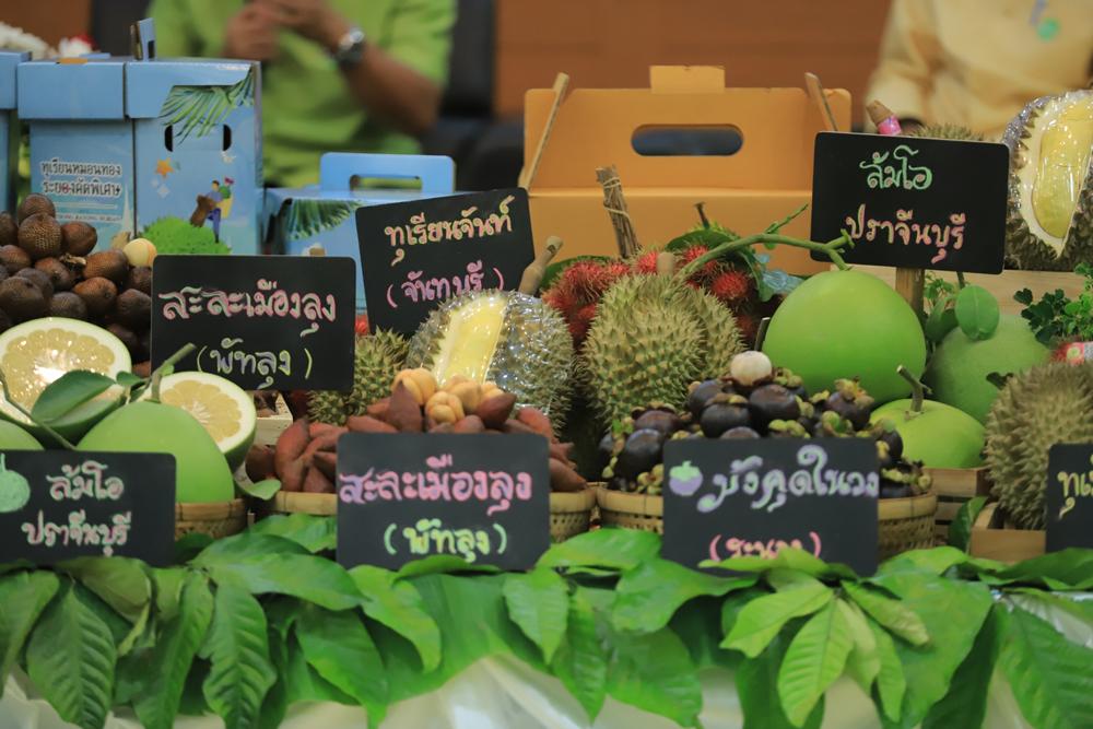 กรมส่งเสริมการเกษตร หนุนสร้างอัตลักษณ์ผลไม้