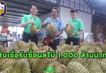ธ.ก.ส. หนุนสินเชื่อเกษตรกรที่รับซื้อผลไม้ 1,000 ล้านบาท