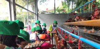 กรมส่งเสริมการเกษตร เข้าพัฒนายุวเกษตรกรในโรงเรียน หวังให้สืบทอดอาชีพทางการเกษตร