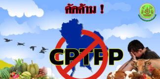 """""""ประพัฒน์"""" กระตุก CPTPP ผลประโยชน์ภาคเกษตรไม่ชัดเจน"""