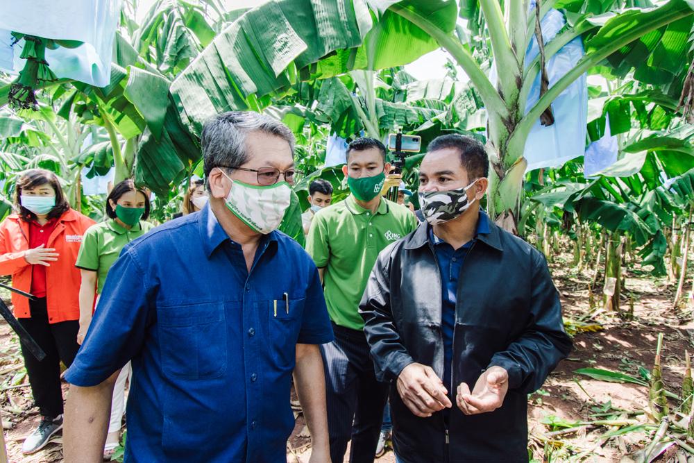 นายสมศักดิ์ แสงรัมย์ ประธานกลุ่มวิสาหกิจชุมชนกล้วยหอมทองตำบลสุขไพบูลย์ (คนขวา)
