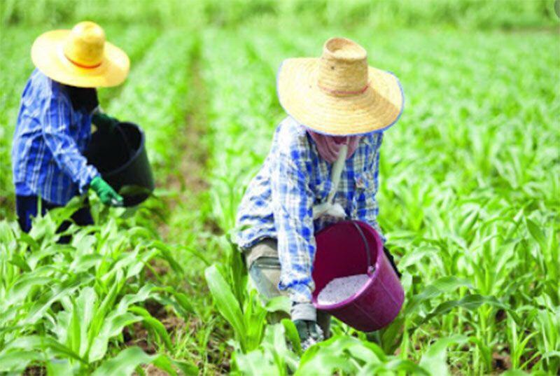 เกษตรฯ แจงงบ ปี 64 รวม 113,980 ล้านบาท เพื่อขับเคลื่อนยุทธศาสตร์ชาติ 5 ด้าน ต่อสภาผู้แทนราษฎร วาระที่ 1