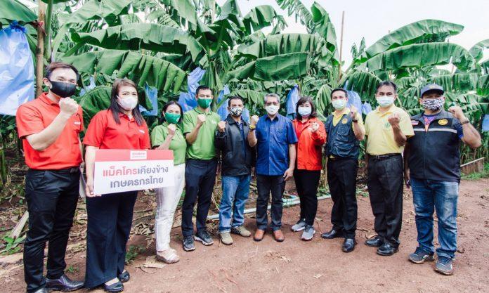 แม็คโคร จับมือ กรมส่งเสริมการเกษตร ยกระดับคุณภาพกล้วยหอมทองแปลงใหญ่โคราช ปั้นกลุ่มเกษตรกรได้มาตรฐาน GAP เน้นปลอดภัย ตลอดห่วงโซ่การผลิต