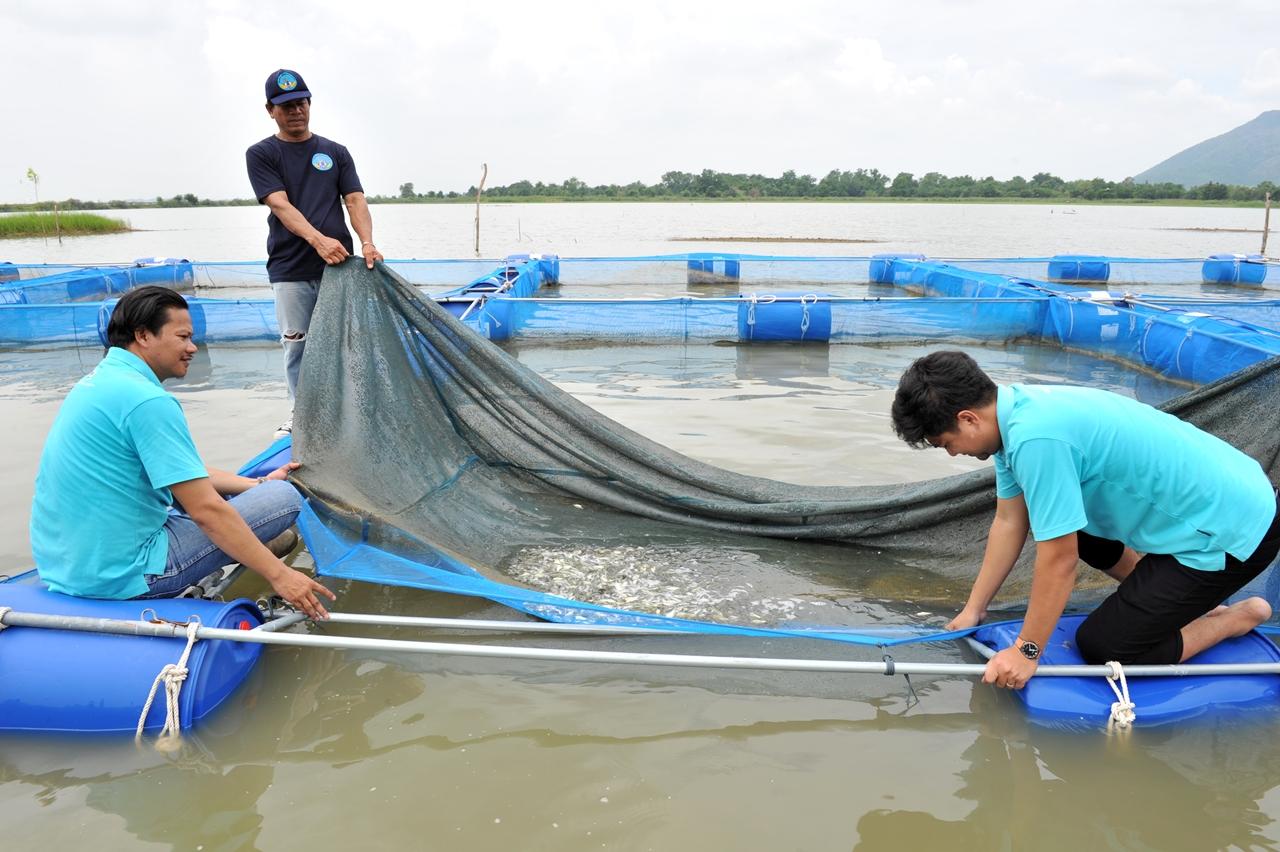 กรมประมง จับมือชุมชนลุ่มน้ำป่าสักและซีพีเอฟ ปล่อยปลาลงเขื่อนป่าสักฯ ฟื้นฟูทรัพยากรสัตว์น้ำ