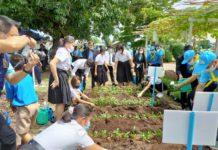 """นิสิต ม.เกษตรฯ ร่วมกิจกรรมจิตอาสา """"ปันสุข ปลูกรัก"""" สอนเพาะเห็ดและปลูกผักสวนครัวในโอกาสวันแม่"""