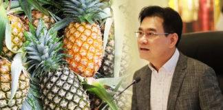 เกษตรฯ เผยสถานการณ์ผลิตสับปะรดและแนวทางการบริหารจัดการผลผลิต ปี 2564