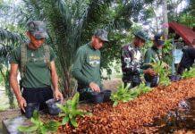 อบรมทหารกองประจำการเป็นทายาทเกษตรรุ่นใหม่ ผลตอบรับล้มหลาม เล็งขยายผลต่อเนื่อง