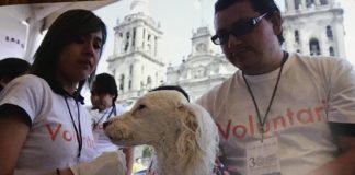 องค์กรพิทักษ์สัตว์แห่งโลก ประเทศไทย เผยรายงานระดับโลกกับทางออก โรคพิษสุนัขบ้าพร้อมหนุนสวัสดิภาพสัตว์ป้องกันโรคสัตวสู่คน