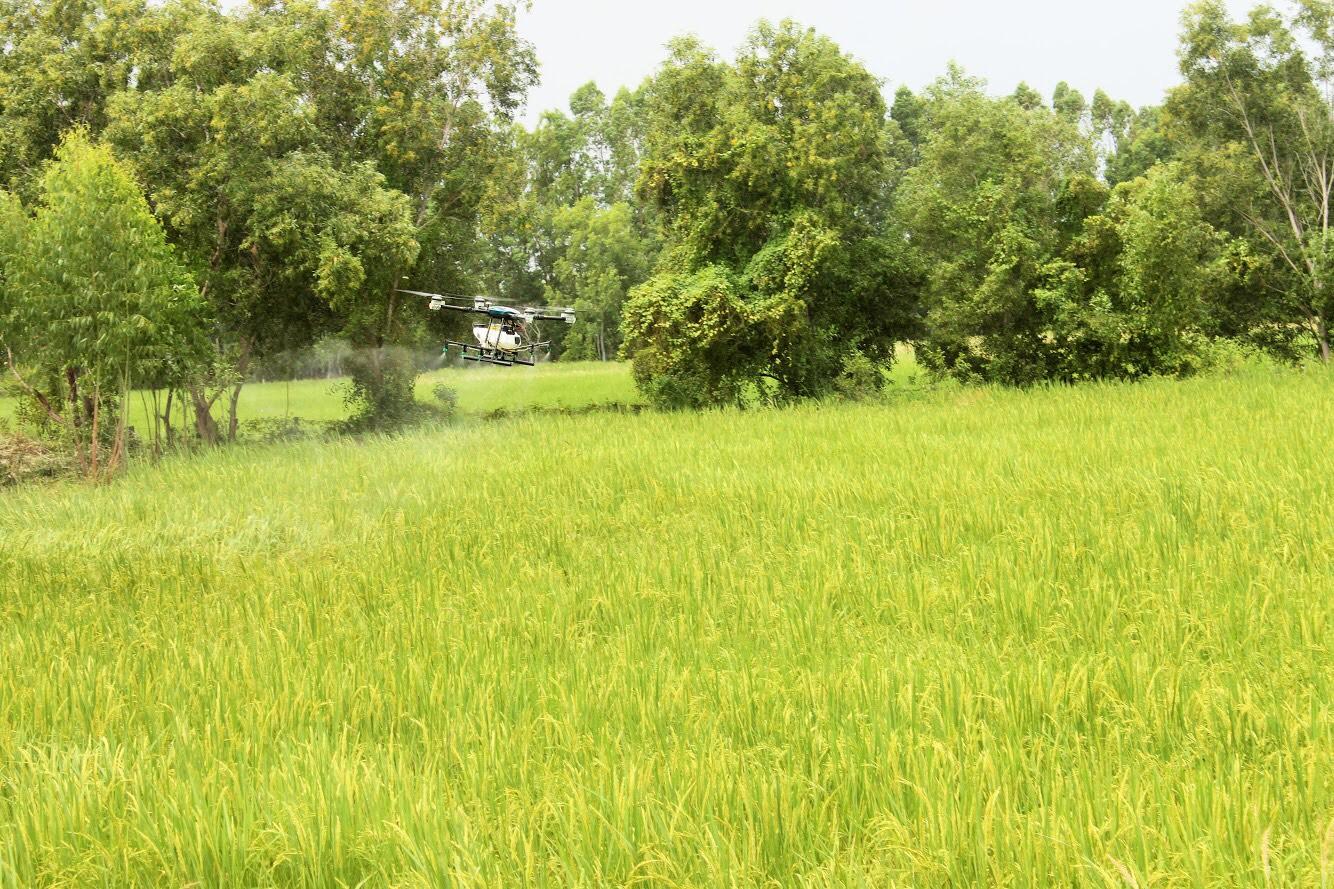 บมจ. ไทยเซ็นทรัลเคมี ร่วมกับ โรงสีศรีแสงดาว จัดอบรมเกษตรกร เรื่องการจัดการธาตุอาหารและการใช้ปุ๋ยในนาข้าว หวังเพิ่มผลผลิตให้มีปริมาณและคุณภาพสูงขึ้น