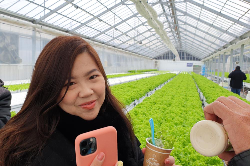 """ชมโรงงานปลูกผัก """"คูโบต้าฟาร์ม-ญี่ปุ่น"""""""