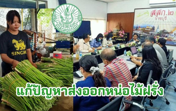 พิษโควิด กรมส่งเสริมการเกษตร เปิดเวทีช่วยเจรจา เกษตรกรหน่อไม้ฝรั่งส่งออกญี่ปุ่น