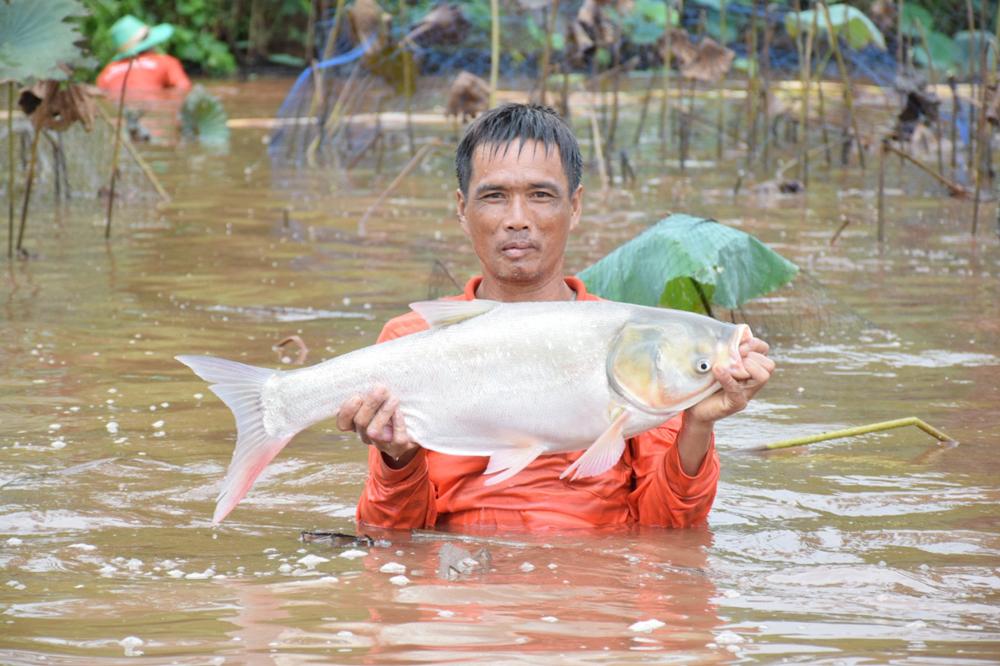 กรมประมง หว่านแห จับปลา หรรษา บุรีรัมย์