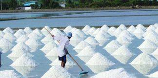 กรมส่งเสริมการเกษตรเดินหน้าพัฒนาเกลือทะเลไทย