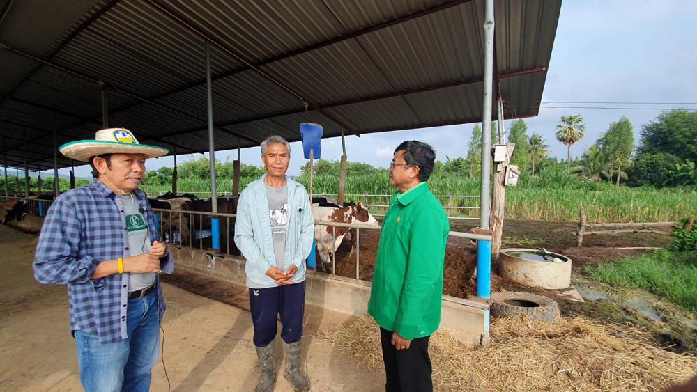 ที่สันติ ฟาร์ม เลี้ยงโคนม และเกษตรผสมผสาน