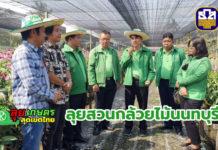ธ.ก.ส.นนทบุรี ลงพื้นที่พบเกษตรกรกล้วยไม้ เผยตลาดส่งออกเริ่มดีขึ้นตามลำดับ