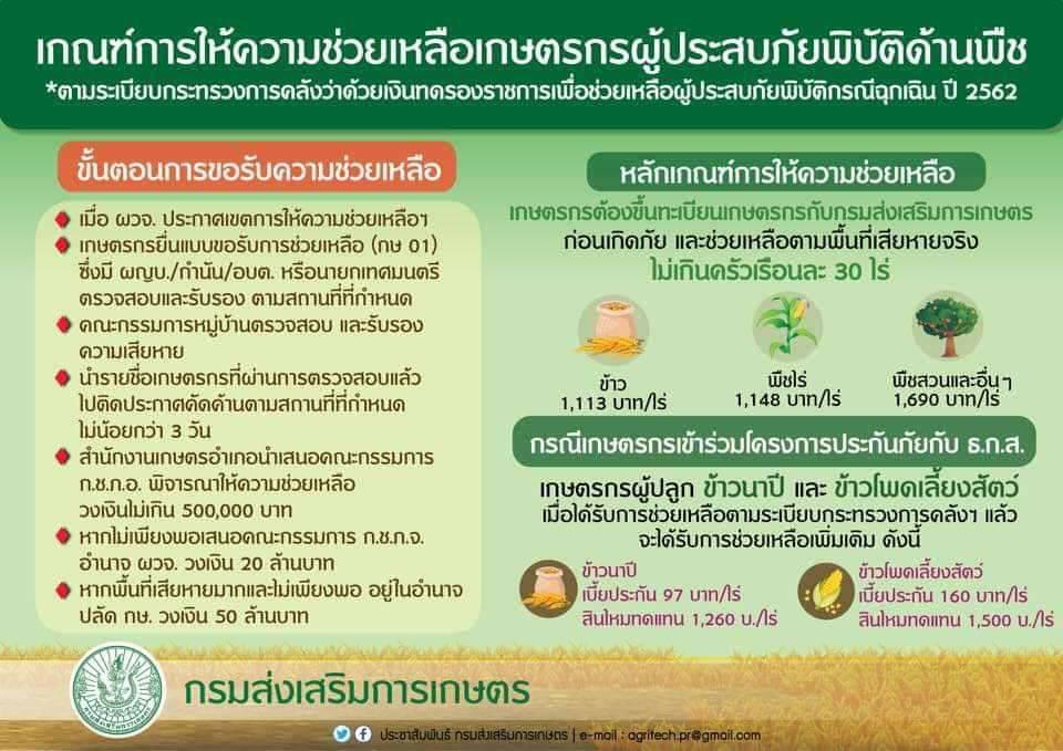 กรมส่งเสริมการเกษตรสั่งด่วนเร่งสำรวจพื้นที่เสียหาย เตรียมช่วยเหลือพี่น้องเกษตรกรภาคใต้ ฟื้นฟูพื้นที่การเกษตรทันทีหลังน้ำลด