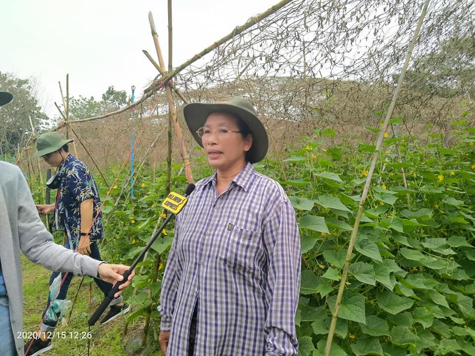 เกษตรกรยืนยันแตงกวาสปีดแม็ก ดกมากมีจุดเด่นเพียบ-คุณชลชนก โพธิ์ดำรงชัย (จุ๋ม) ตำบลอ่างหิน อำเภอปากท่อ จังหวัดราชบุรี