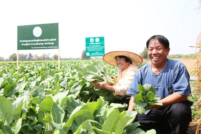 กรมส่งเสริมการเกษตรวางเป้าหนุนเกษตรกรผลิตตามระบบ GAP ให้ได้ 10,000 ราย ในปี 2564