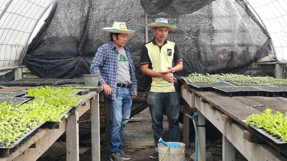 โรงเรือนเพาะต้นกล้าผักที่ผ่านขั้นตอนการปลูกแบบเกษตรอินทรีย์ที่พิถีพิถันตั้งแต่จุดเริ่มต้น