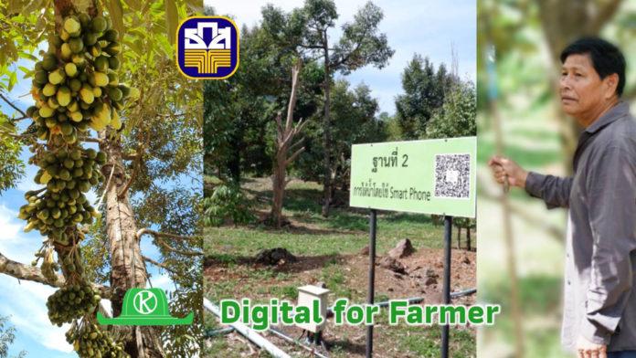 Digital for Farmer เกษตรกรไทยจะใช้ digital technology มาพัฒนาอาชีพการเกษตรได้อย่างไร?