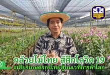 """ทำเกษตรแบบคนรุ่นใหม่ """"นัฐวุฒิ เนตรประไพ"""" กับสวนกล้วยไม้ตัดดอก 40 ไร่ ที่นนทบุรี"""